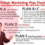 Marketing Plan Glutavia Flashin