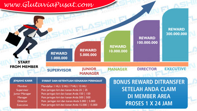 Bisnis Gluta Via Flashing Marketing Plan Member